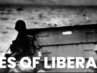 NETFLIX role: 'Voices of Liberation'