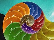 integral-spiral_dicalva_edited.jpg