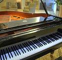 Palisade Gardens Piano Lounge