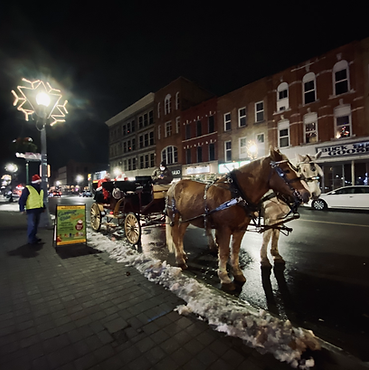 Santa House & Carriage Rides in Downtown Woodstock