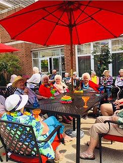 Palisade Gardens residents garden party