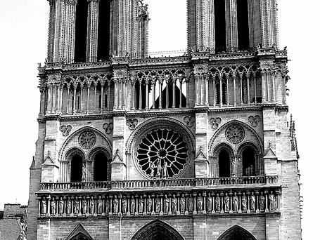 Impressioni di viaggio: Parigi, rosa eterna
