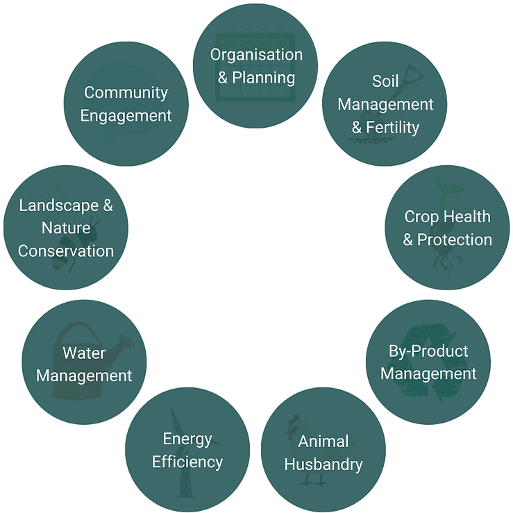 Organisation & Planning.png