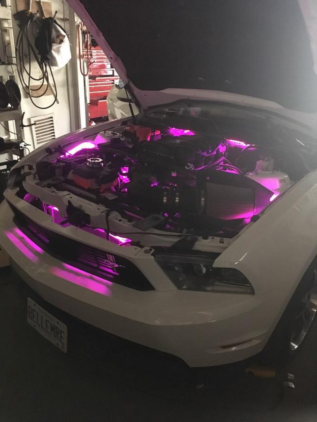 Ford purple lights