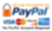 payment logo_edited.png