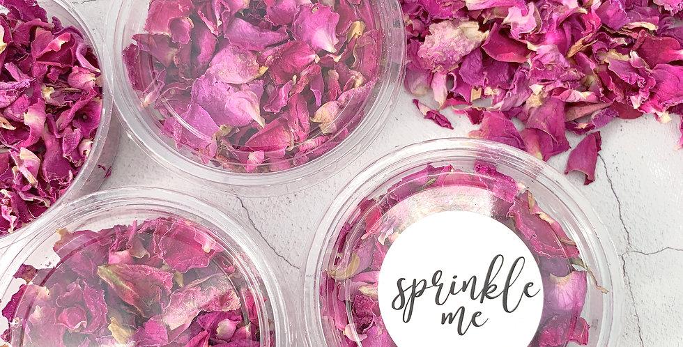 Pink Rose Pots