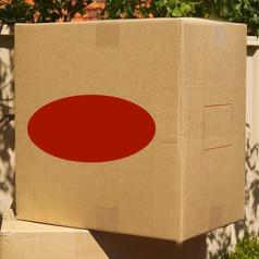 Extra Large Box