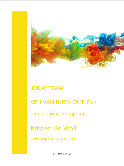 Gratis ebook: JOUW TEAM VRIJ VAN BURN-OUT