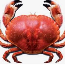 Natural Crab Powder Flavoring
