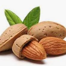 Almond Artificial & Liquid Flavoring