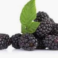 Blackberry Artificial & Liquid Flavoring