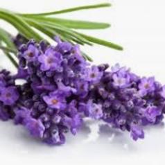 Lavender Liquid Flavoring