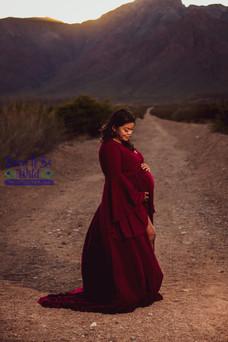 Spokane Maternity Photographer-2.JPG