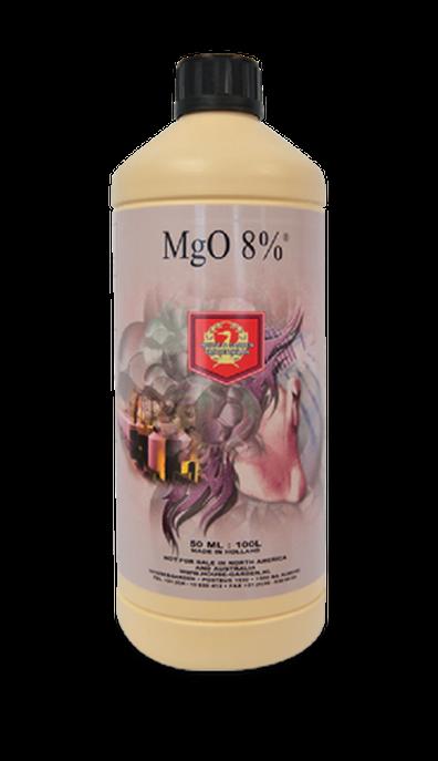 HOUSE & GARDEM MgO8% MAGNESIUM 1L