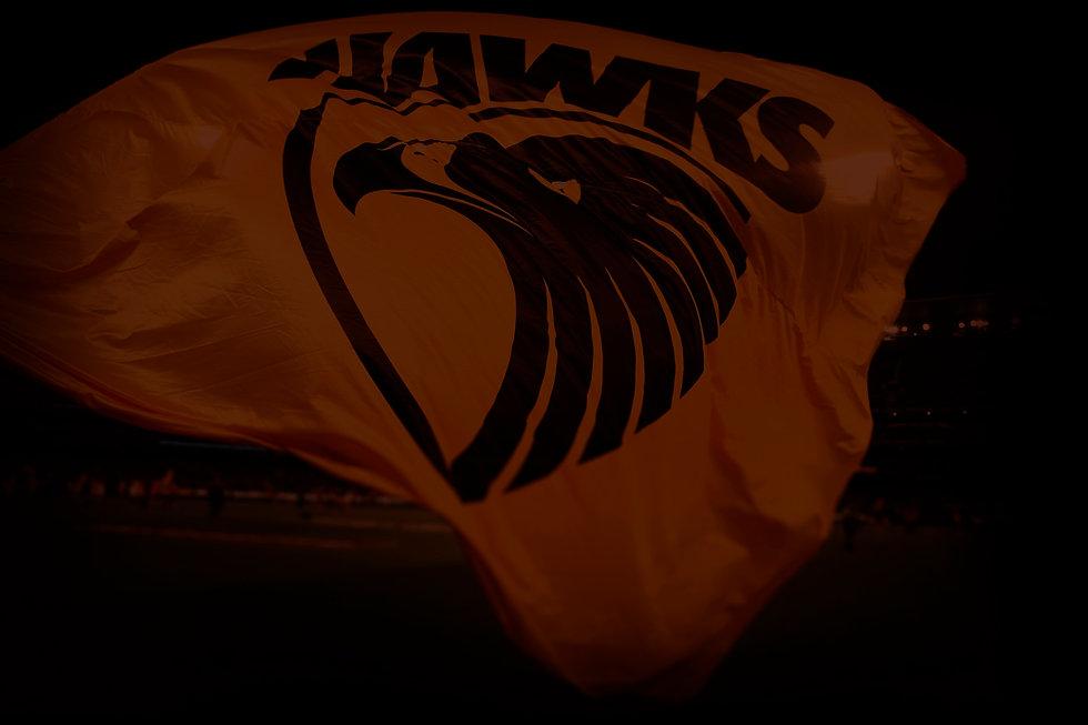 Landing Page_HAWKS Flag.jpg