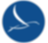 Deansgate Medical Logo