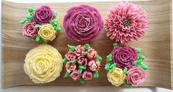 Cupcakes - Shades of Burgundy, Pink