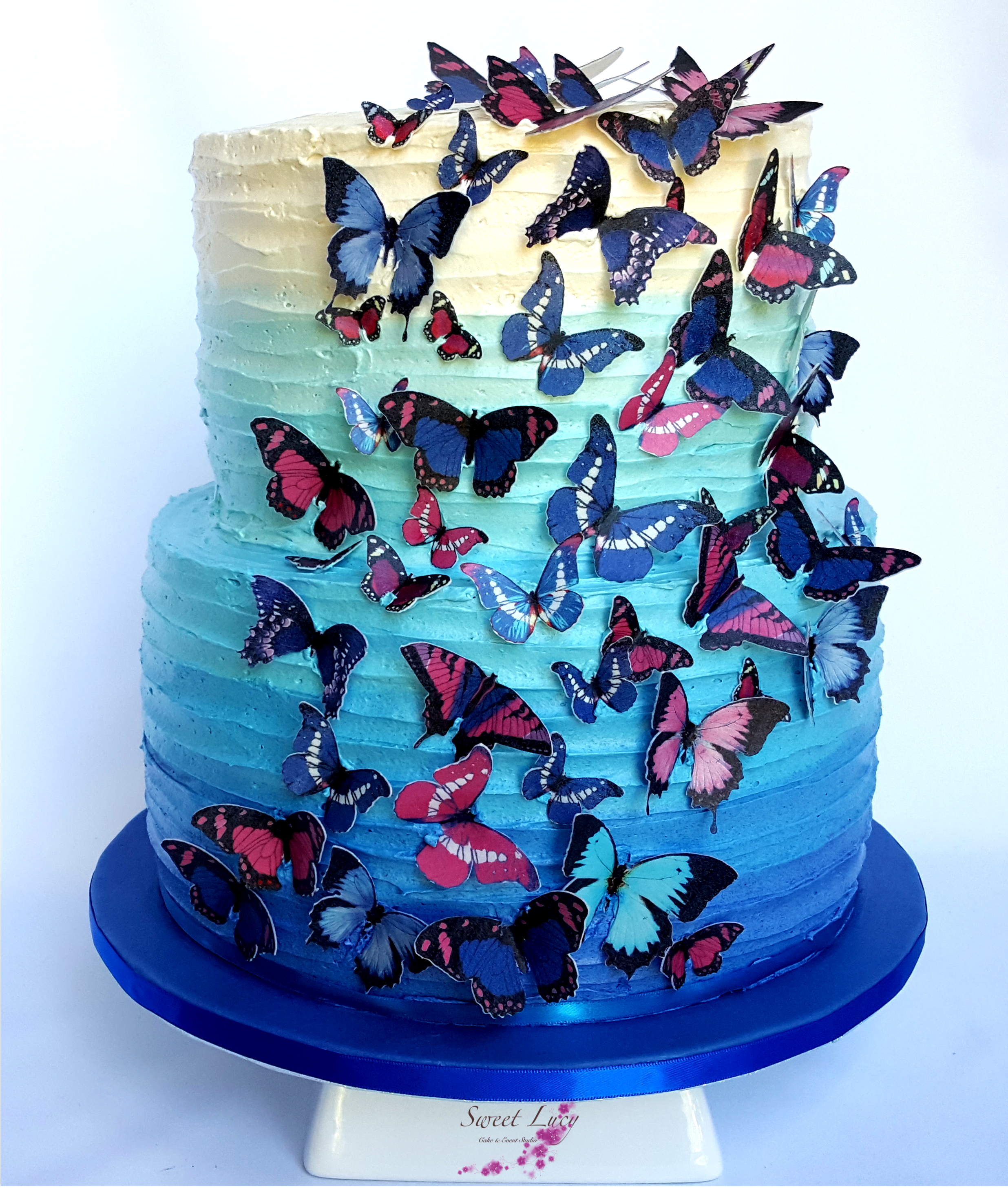 Blue Ombre Buttercream 2 Tier