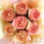 Roses - Pink.jpg