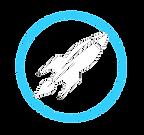 development icon copy.png