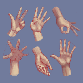 Life drawing Hands 03.png