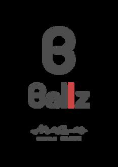 Ballz LOGO 1 rgb.png