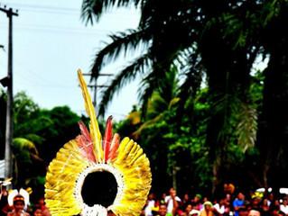 Conheça a Reserva Indígena Aldeia Velha