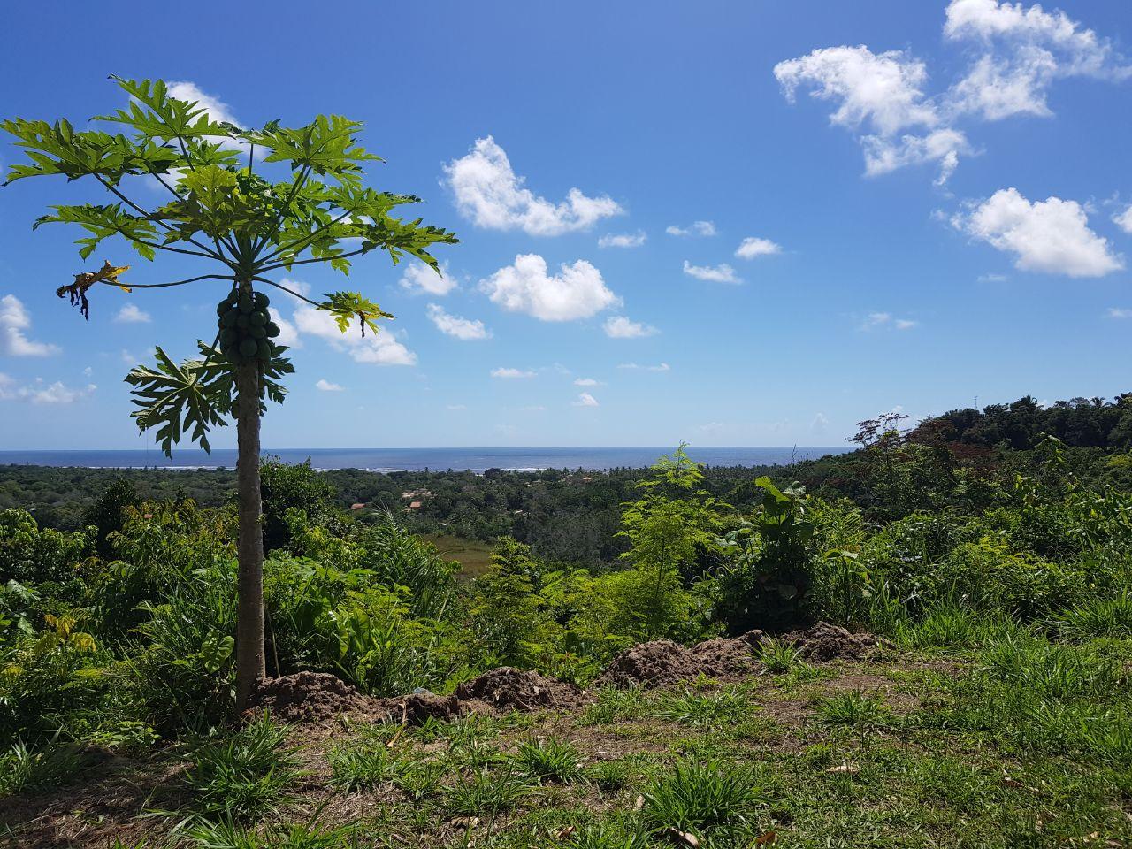 Visite Arraial d'Ajuda Bahia