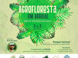 Curso de Agrofloresta será nos dias 1 a 3 de junho