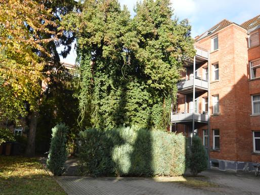 Hochparterre 3 Zimmer-Wohnung in zentraler Lage von Heilbronn!
