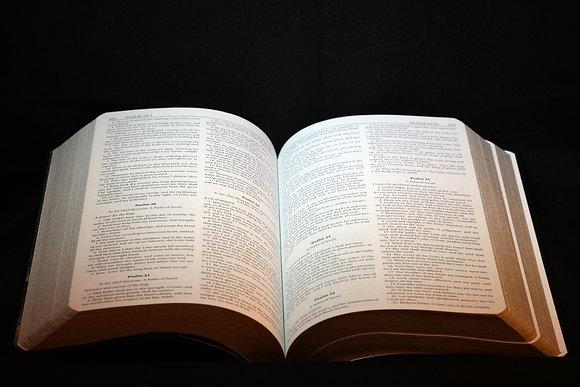 BOX OF BIBLES