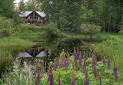 Ravenwood's pond