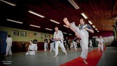 Visuel sportif cours de Dojo