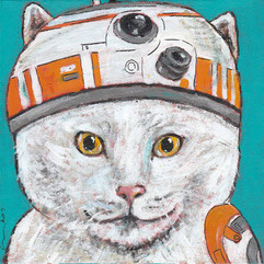 BB8 Kitty