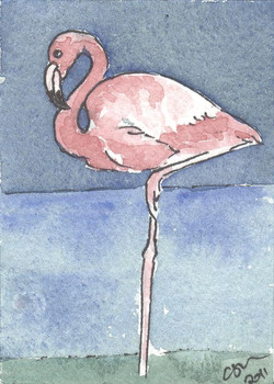 ACEO+Flamingo.jpg