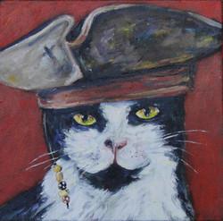 Captain Jack Cat