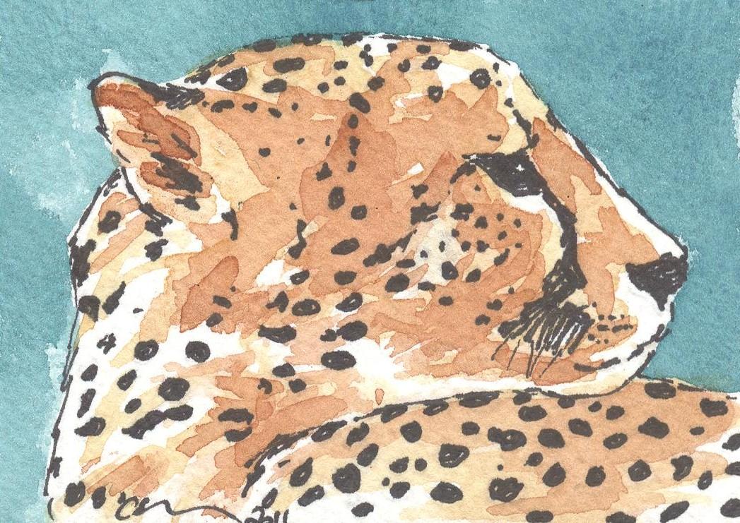 ACEO+Cheetah+Watercolour.jpg