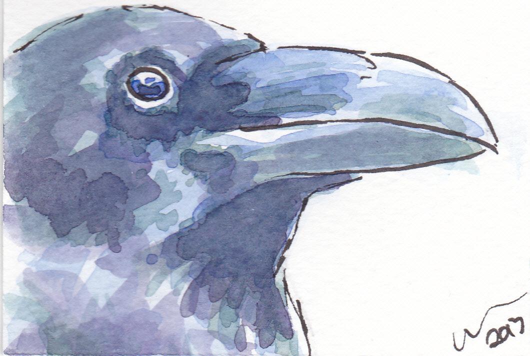 ACEO+Raven+Look.jpg
