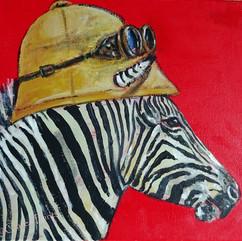 Explorer Zebra