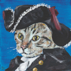 Pirate Tabby