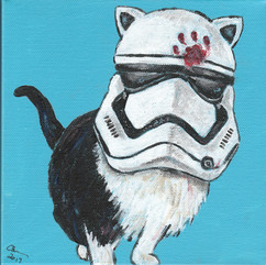 Stormtrooper Cat
