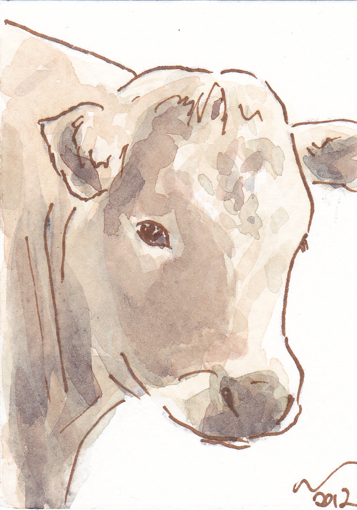 ACEO+Cow+Pose.jpg