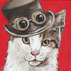 Titfer Cat