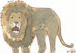 ACEO+Lion+Roar.jpg
