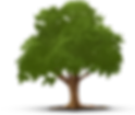 TOL tree only.png