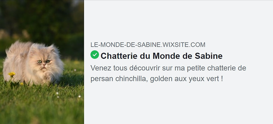 banniére_site_chatterie.jpg