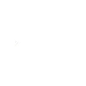Opportunity.png