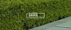 Illovo Green