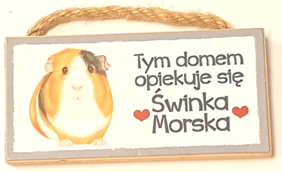 "MAGNES ZAWIESZKA Z TWOIM PUPILEM ""ŚWINKA MORSKA"""