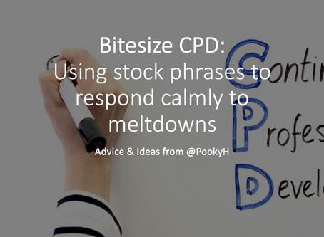 Bitesize CPD: Using stock phrases to respond calmly to meltdowns